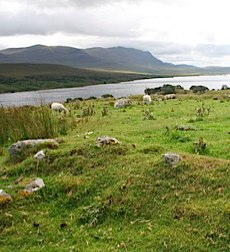 The remains of Grumbeg Village, site of one of the Highland clearances