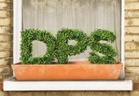 The DPS windowbox
